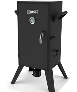 Dyna-Glo GAnalog Electric Smoker under 200 $