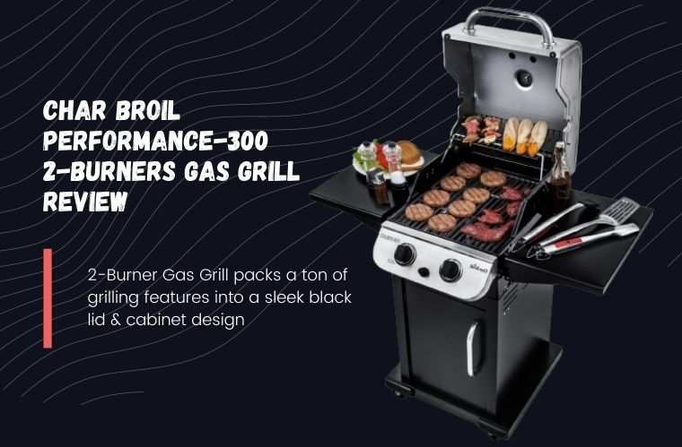 Char Broil Performance 300 2 Burner Gas Grill Review