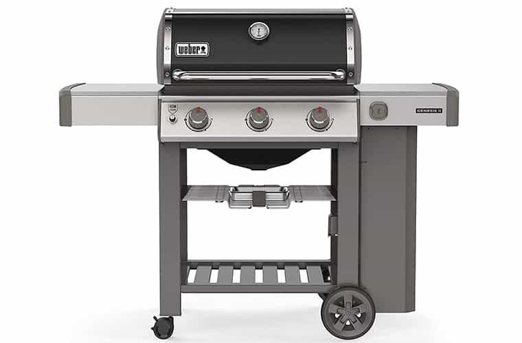 Weber Genesis II E-310 Review